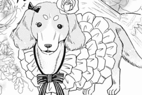 11.犬貴族、桶狭間の戦い再び…であるか?