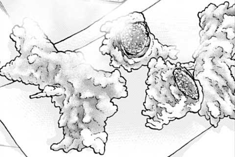 224.明太子の天ぷら