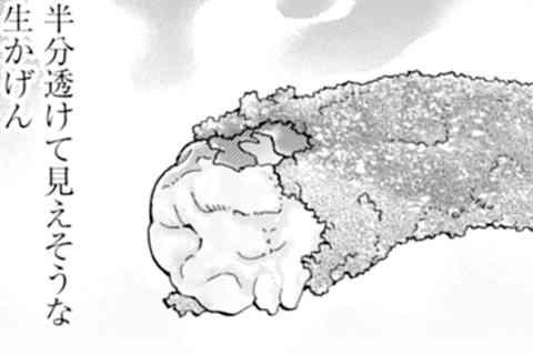 218.魚介串カツ