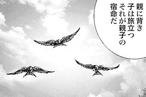 189.巣立ちする子燕!!の巻